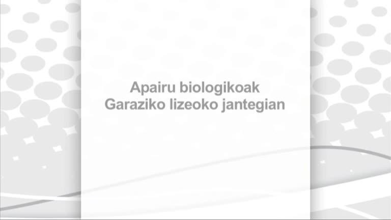 Apairu biologikoak D. Garaziko lizeoko jantegian
