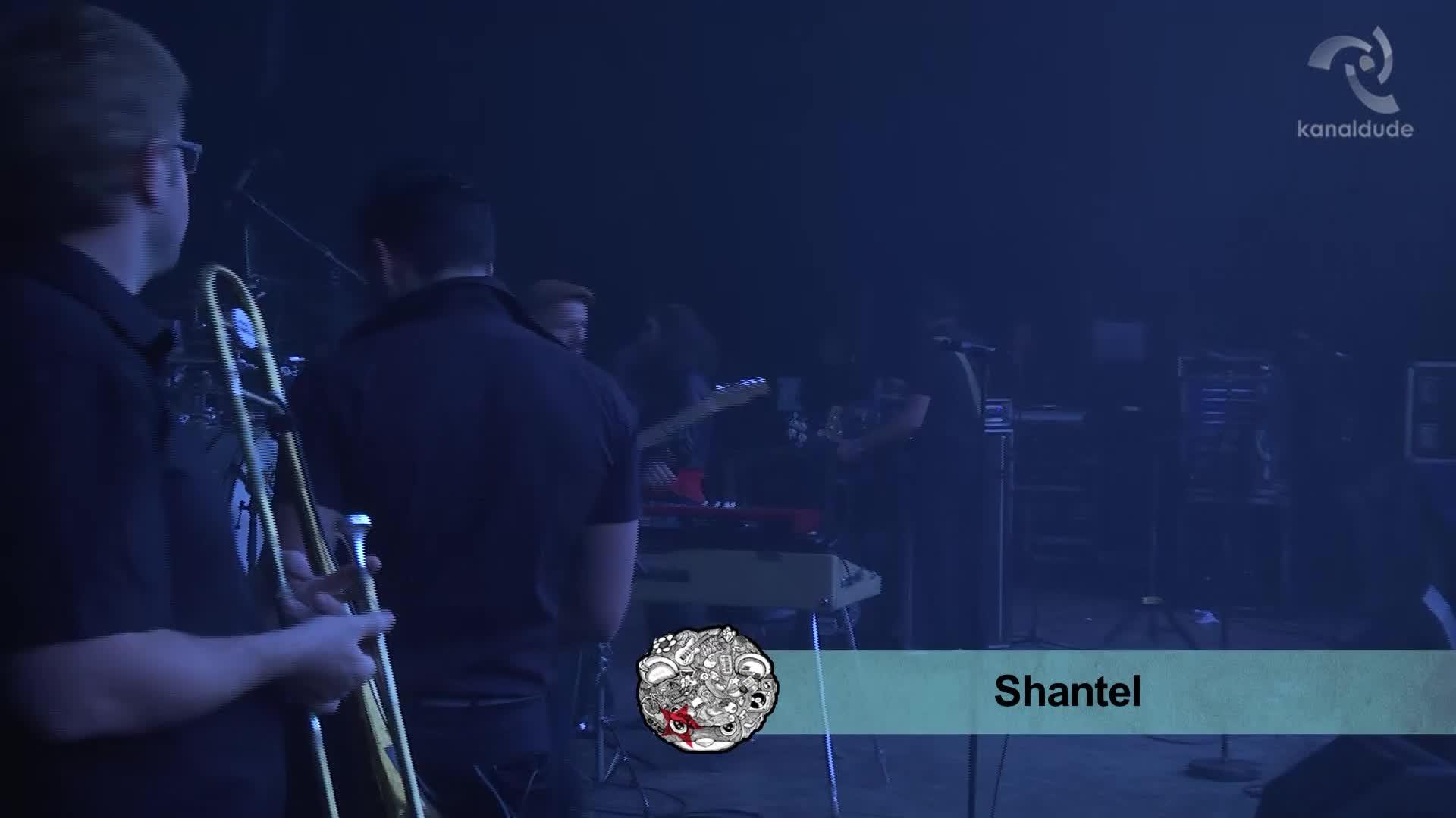 EHZ 2014: Shantel