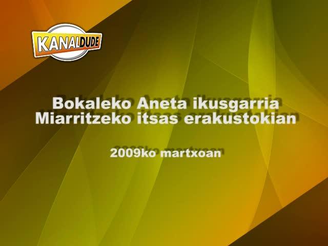 Bokaleko Aneta