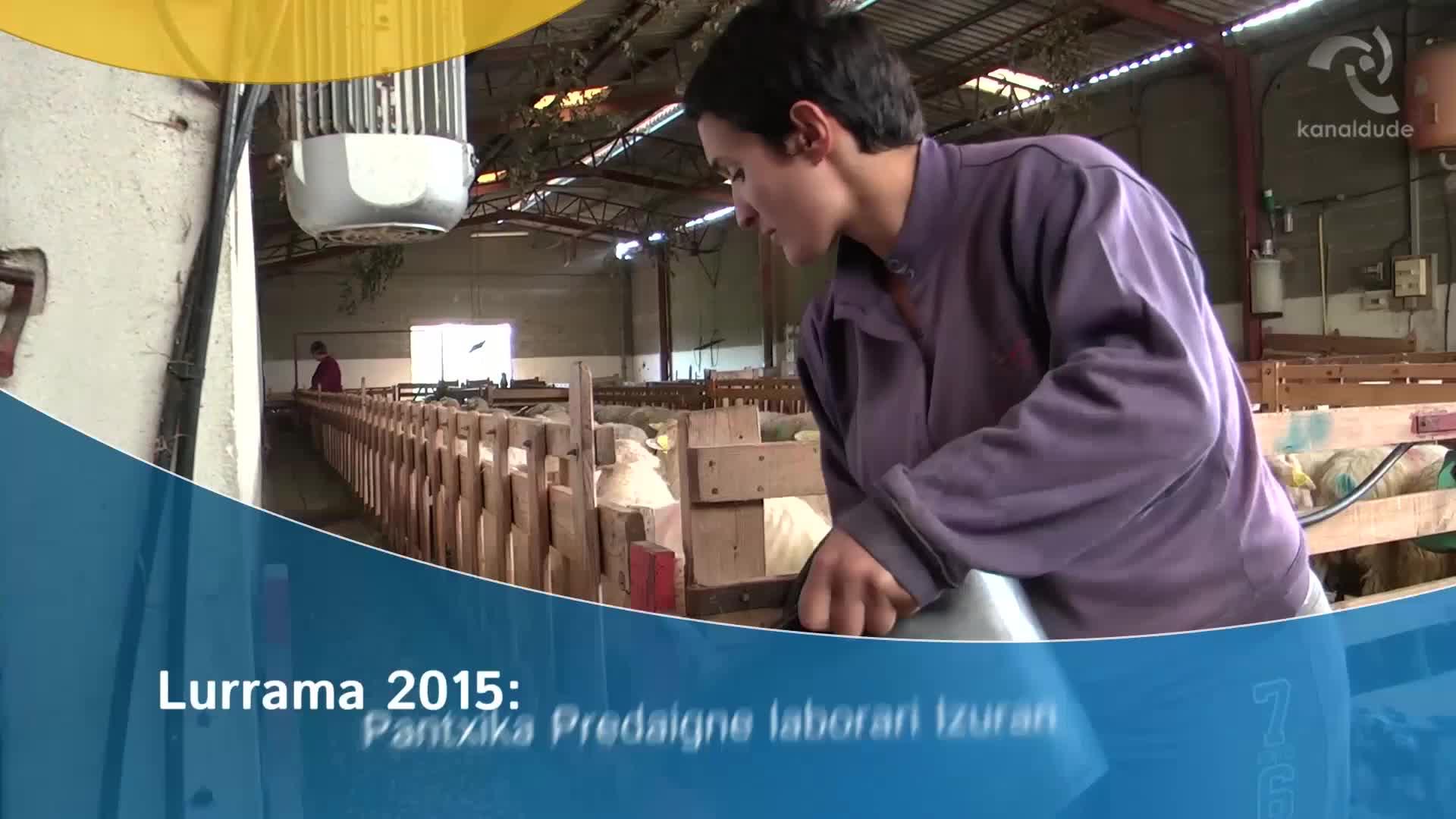 Lurrama 2015: Pantxika Predaigne laborari Izuran