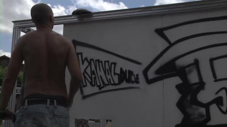 EHZ 2012 : marrazki pollit bat guretzat !