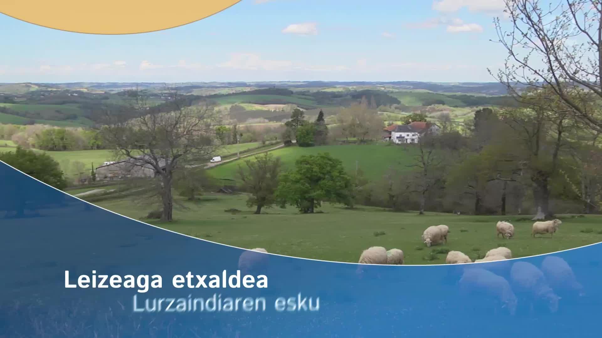 Leizeaga etxaldea Lurzaindiaren esku
