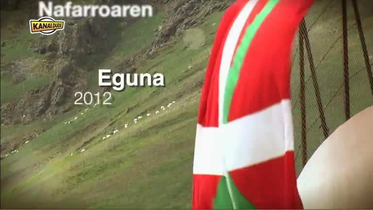 Nafarroaren Eguna 2012 : eguna iruditan (2)