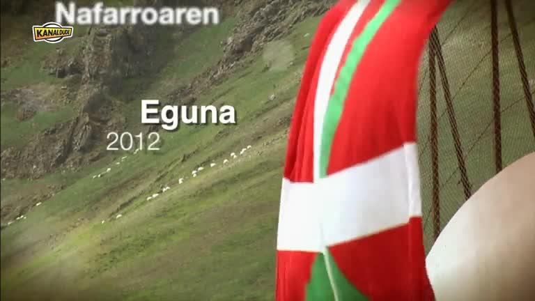 Nafarroaren Eguna 2012 : eguna iruditan