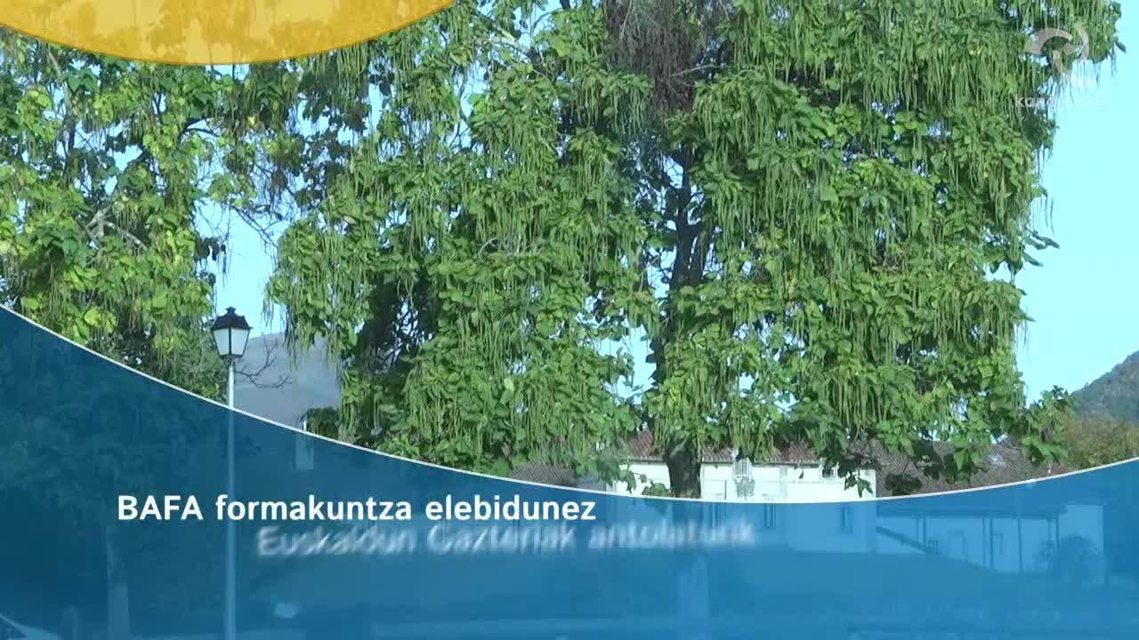 BAFA formakuntza elebidunez Euskaldun Gazteriak antolaturik