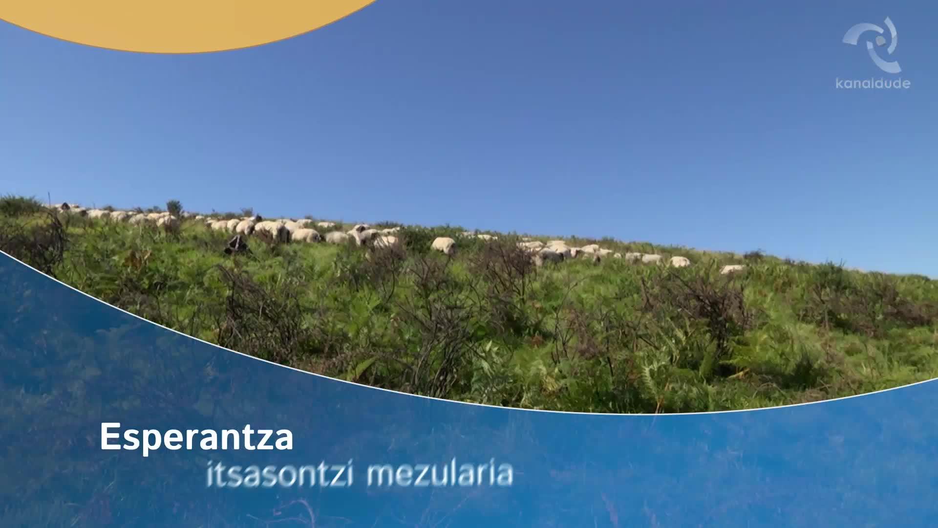 Esperantza: itsasontzien mezularia
