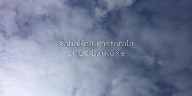 Xahakoa Pastorala 2010 Muntaketa