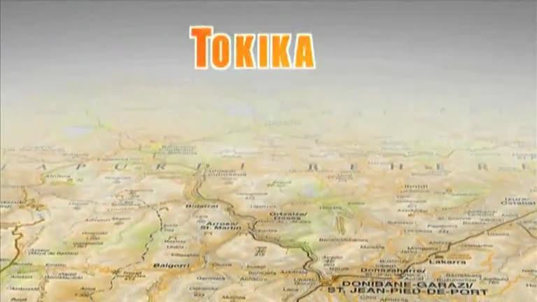 TOKIKA : Urtxoko xoriak