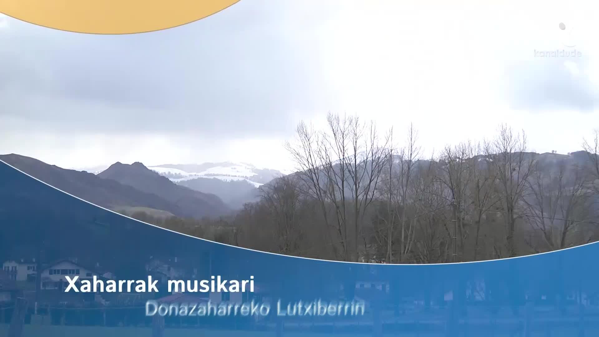 Xaharrak musikari Donazaharreko Lutxiberrin