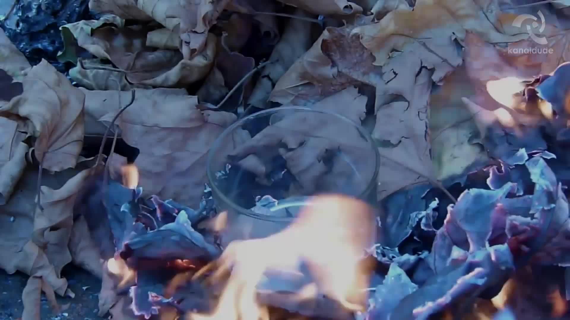 Kliklap filma labur lehiaketa: aurtengo gaia Ura