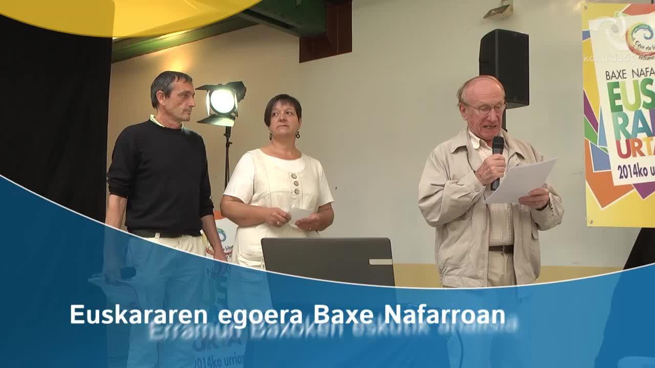 Euskararen egoera Baxe Nafarroan, Erramun Baxoken eskutik analisia