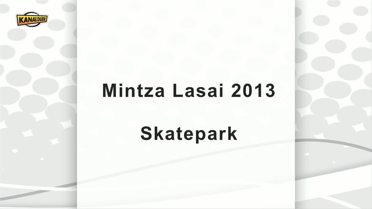 Mintza lasai 2013 : Skatepark