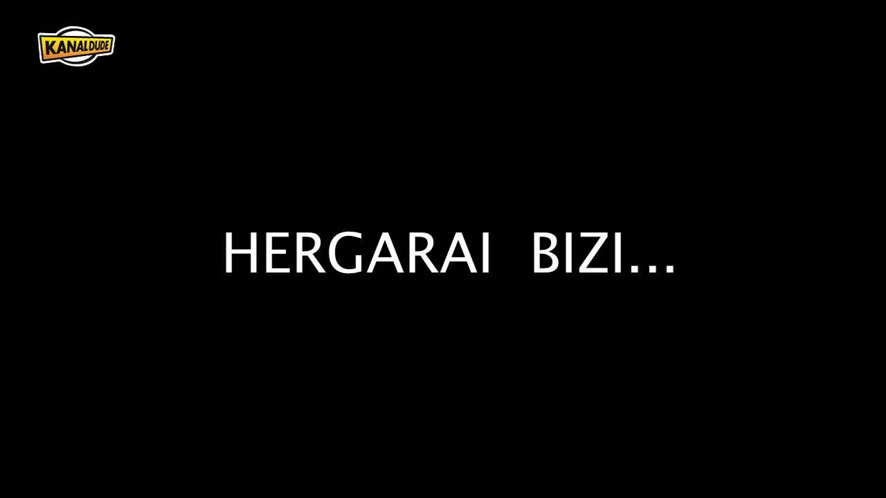 Hergarai bizi 2013