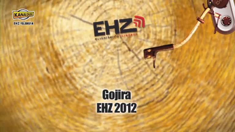 EHZ 2012 : Gojira